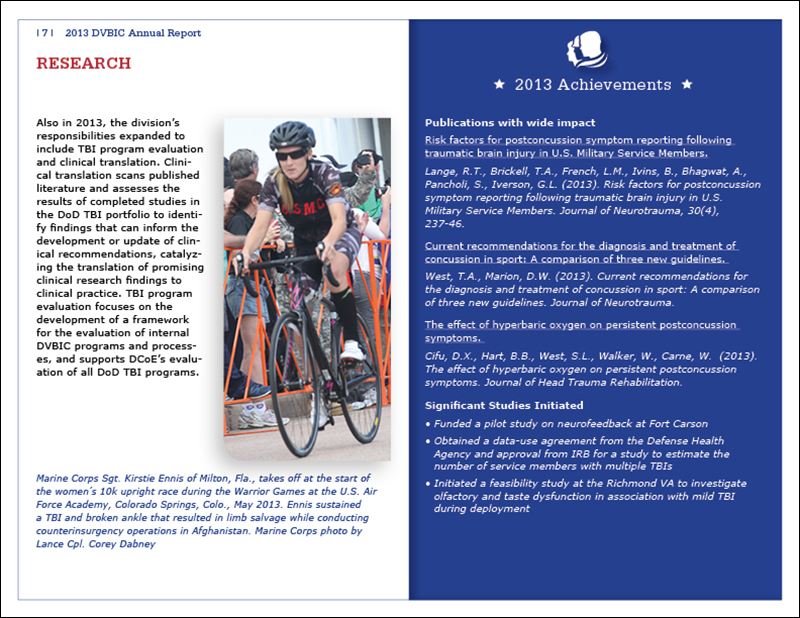 DVBIC annual report inside page 7